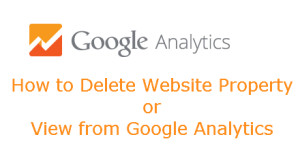 Google Analytics - How to Delete View