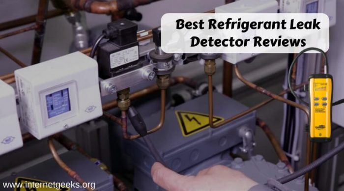 Best Refrigerant Leak Detector Reviews (1)