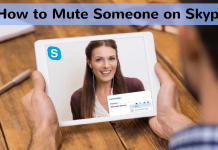 How-to-Mute-Someone-on-Skype